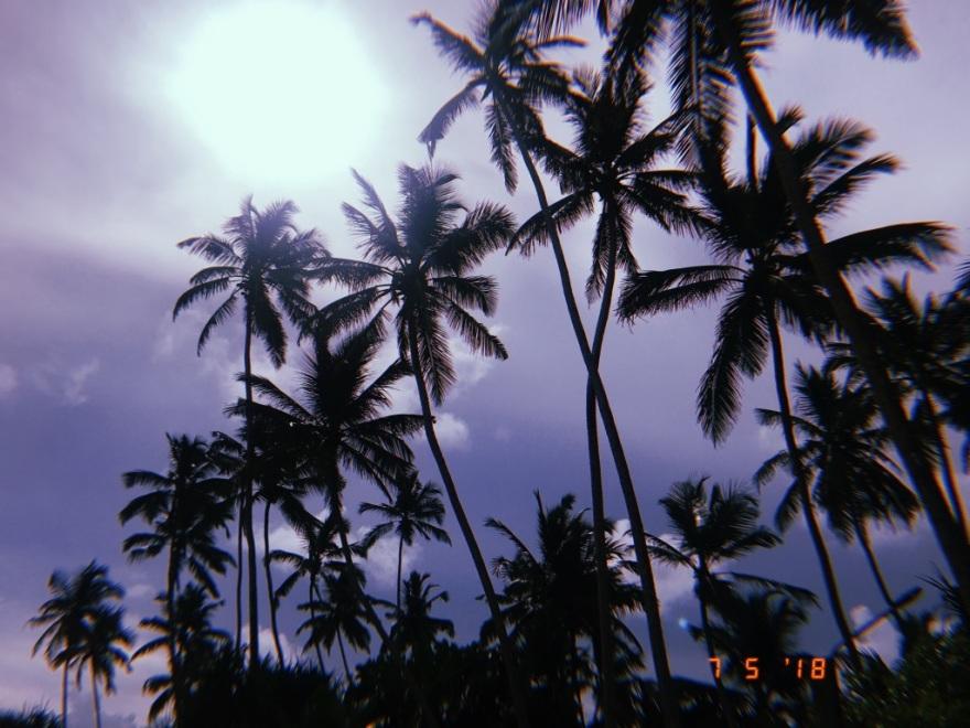 UNADJUSTEDNONRAW_thumb_32e3